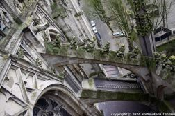 the-wonderful-climb-st-johns-cathedral-shertogenbosch-055_25562361812_o