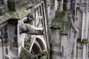 the-wonderful-climb-st-johns-cathedral-shertogenbosch-057_25588398781_o