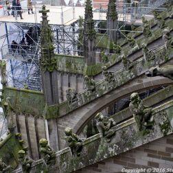 the-wonderful-climb-st-johns-cathedral-shertogenbosch-058_25681077675_o