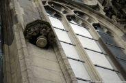 the-wonderful-climb-st-johns-cathedral-shertogenbosch-060_25562342552_o