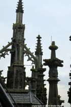 the-wonderful-climb-st-johns-cathedral-shertogenbosch-062_25588381871_o