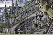 the-wonderful-climb-st-johns-cathedral-shertogenbosch-063_25588379001_o
