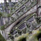 the-wonderful-climb-st-johns-cathedral-shertogenbosch-064_25054317743_o