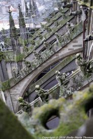 the-wonderful-climb-st-johns-cathedral-shertogenbosch-064_25054317743_o