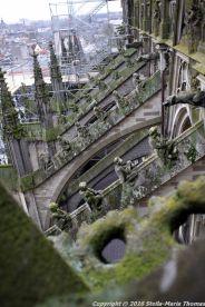 the-wonderful-climb-st-johns-cathedral-shertogenbosch-065_25050520954_o