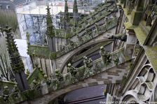 the-wonderful-climb-st-johns-cathedral-shertogenbosch-066_25654869446_o