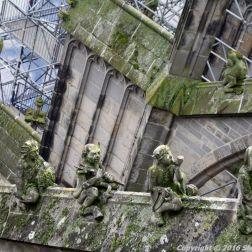 the-wonderful-climb-st-johns-cathedral-shertogenbosch-068_25054301773_o