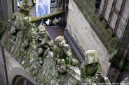 the-wonderful-climb-st-johns-cathedral-shertogenbosch-069_25654856056_o