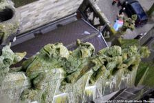 the-wonderful-climb-st-johns-cathedral-shertogenbosch-074_25588333661_o