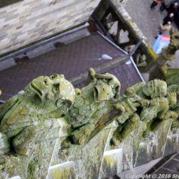 the-wonderful-climb-st-johns-cathedral-shertogenbosch-074_25588333661_o
