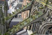 the-wonderful-climb-st-johns-cathedral-shertogenbosch-079_25680993675_o