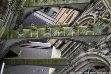 the-wonderful-climb-st-johns-cathedral-shertogenbosch-080_25380139020_o