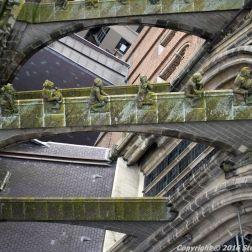 the-wonderful-climb-st-johns-cathedral-shertogenbosch-080_25380139020_o