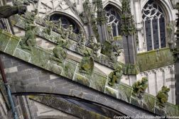the-wonderful-climb-st-johns-cathedral-shertogenbosch-081_25654804696_o