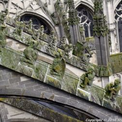 the-wonderful-climb-st-johns-cathedral-shertogenbosch-081_25654804696_o
