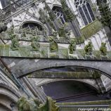 the-wonderful-climb-st-johns-cathedral-shertogenbosch-082_25680979165_o