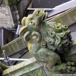 the-wonderful-climb-st-johns-cathedral-shertogenbosch-084_25654791356_o
