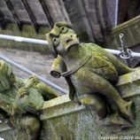 the-wonderful-climb-st-johns-cathedral-shertogenbosch-085_25588286751_o