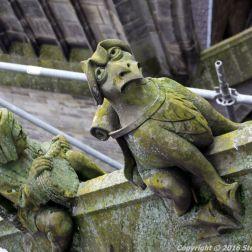 the-wonderful-climb-st-johns-cathedral-shertogenbosch-085_25588286751_o