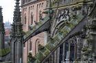 the-wonderful-climb-st-johns-cathedral-shertogenbosch-086_25654782666_o