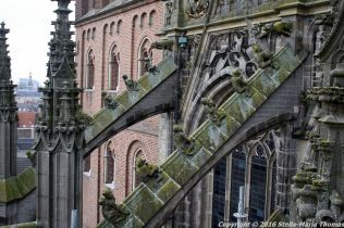 the-wonderful-climb-st-johns-cathedral-shertogenbosch-086_25654782666_o