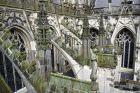 the-wonderful-climb-st-johns-cathedral-shertogenbosch-087_25562873332_o
