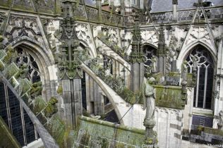 the-wonderful-climb-st-johns-cathedral-shertogenbosch-087_25562873332_o
