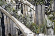 the-wonderful-climb-st-johns-cathedral-shertogenbosch-088_25051094464_o