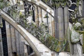 the-wonderful-climb-st-johns-cathedral-shertogenbosch-088_25051094464_o