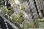 the-wonderful-climb-st-johns-cathedral-shertogenbosch-089_25562859592_o