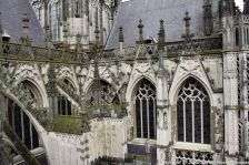 the-wonderful-climb-st-johns-cathedral-shertogenbosch-092_25681574495_o