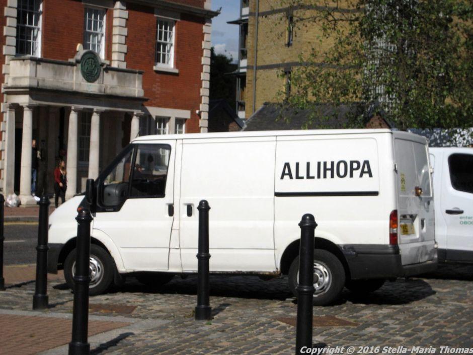 allihopa-004