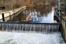 landwehr-canal-berlin-005