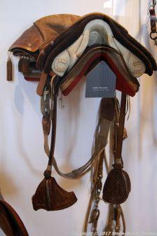 christianslot-stables-005