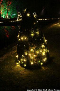 christmas-at-blenheim-006