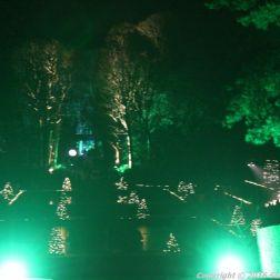 christmas-at-blenheim-016
