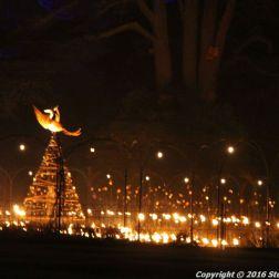 christmas-at-blenheim-023