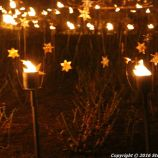 christmas-at-blenheim-029