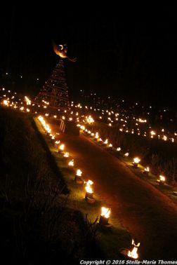 christmas-at-blenheim-031