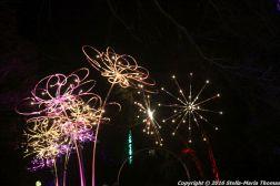 christmas-at-blenheim-035