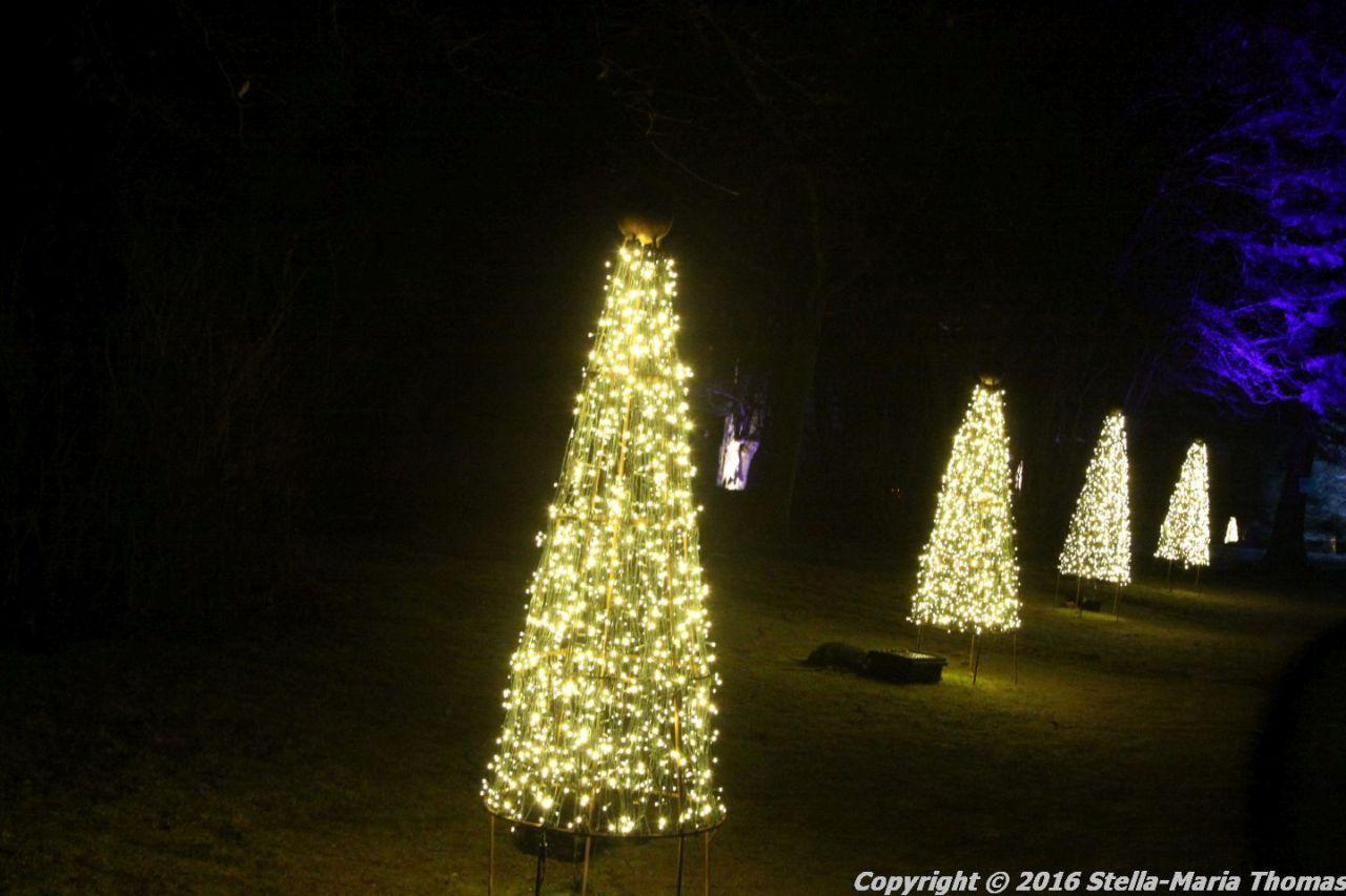christmas-at-blenheim-044