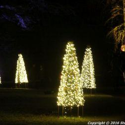 christmas-at-blenheim-045