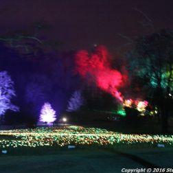 christmas-at-blenheim-048