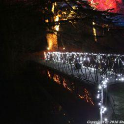 christmas-at-blenheim-084