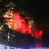 christmas-at-blenheim-085