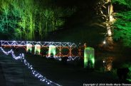 christmas-at-blenheim-093