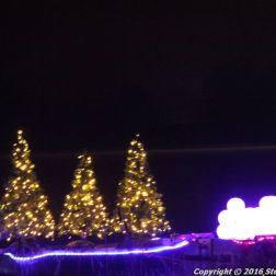 christmas-at-blenheim-095