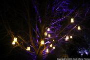 christmas-at-blenheim-103
