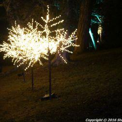 christmas-at-blenheim-105