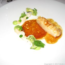 alberto-k-monkfish-parsley-root-browned-butter-cordifole-019